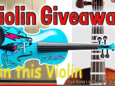 I Hired an Artist to make a Custom Mr Beast Violin